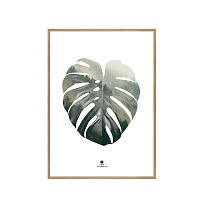Репродукція  Monstera leaf / 50x70 Oak frame