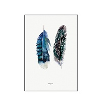 Репродукція на aluminium ALU Indian Feather / 70x100 Black frame